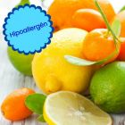 Hipoallergén citrus illat