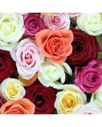 Rózsa illat